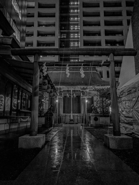 #309 City shrine at night