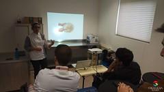 Workshop em Seia GSD