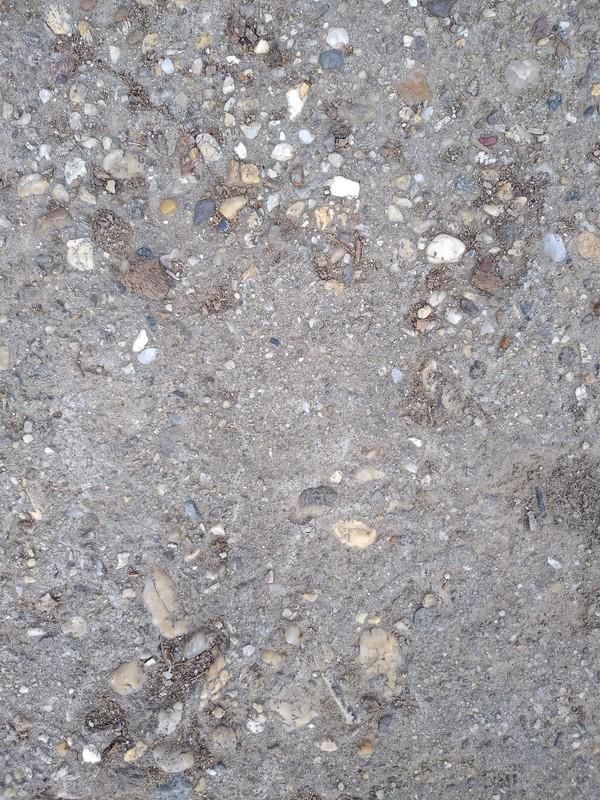 Concrete texture #31