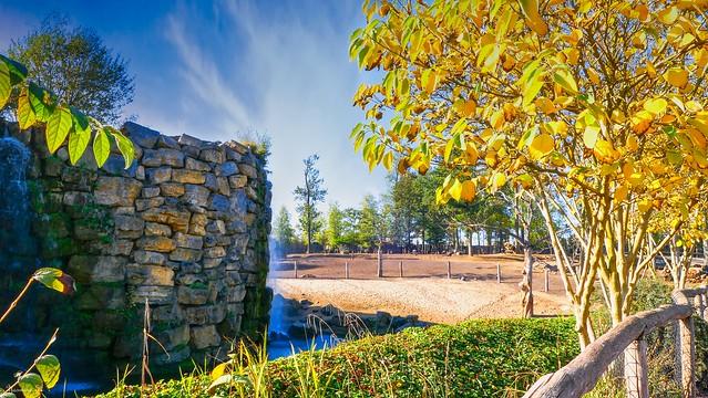 landscape in Autumn - 6043