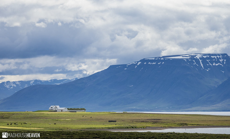 Iceland - 1298