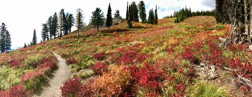 whitefishmountain bigmountain autumn