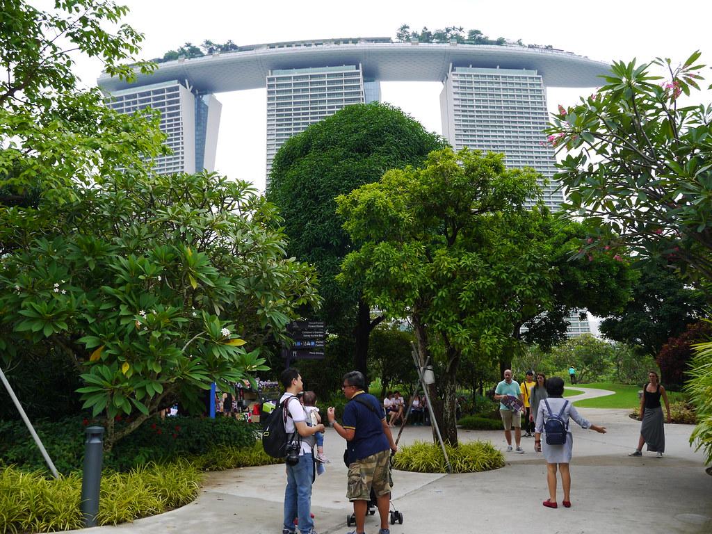 angka main togel singapore