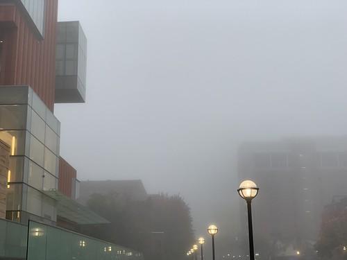 foggy morning in A2 #replyhazytryagain #fog | by valatal