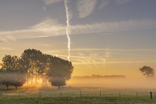 sunrise zonsopkomst zonsopgang zonlicht sunlight fields nature natuur landscape trees bomen