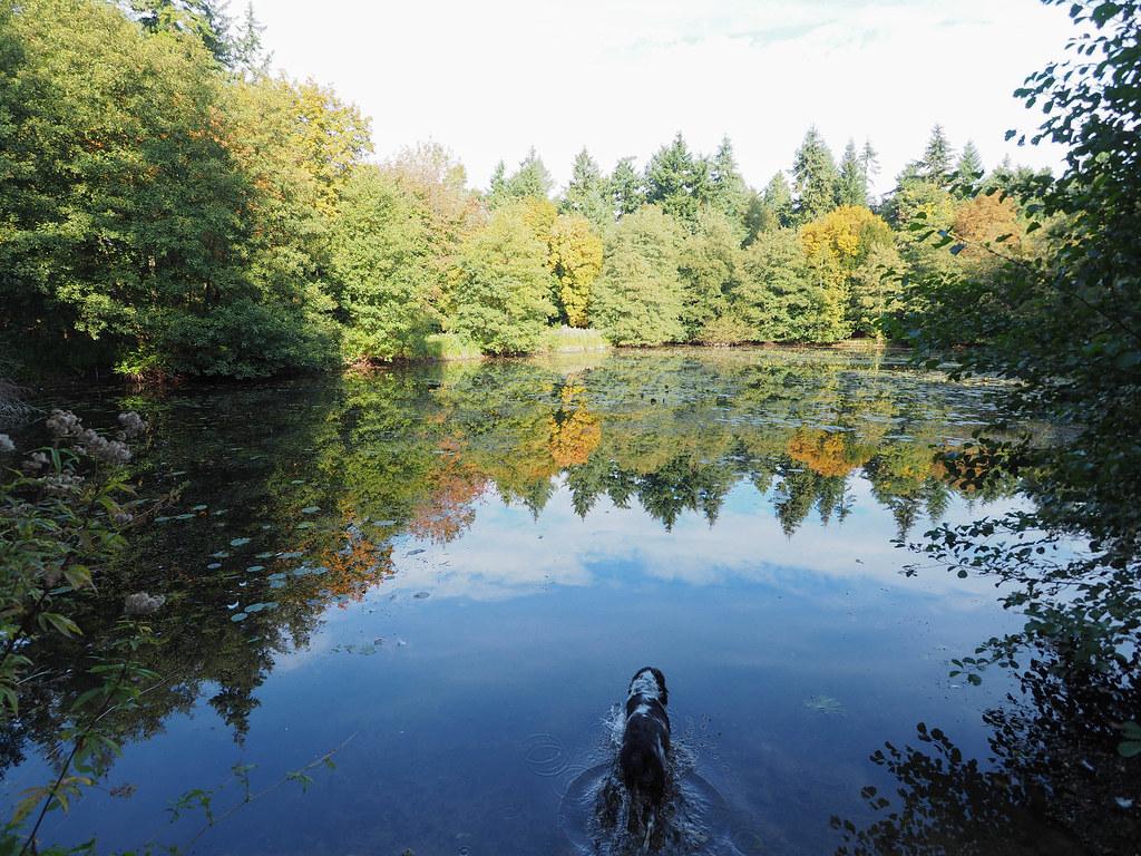 Lynford Lakes.Explored late.