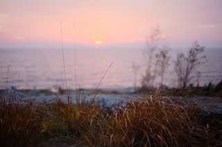 sunset hay