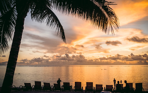 palmtree guam beach pacificisland ocean sunset westinguam pacificocean barrigada gu