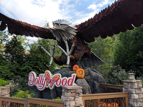 Dollywood | by coconut wireless