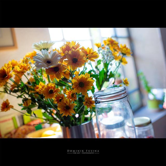 My Sunday's flowers