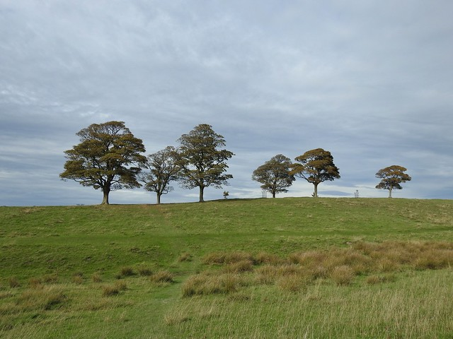 Lyme Park in Cheshire, England - October 2018