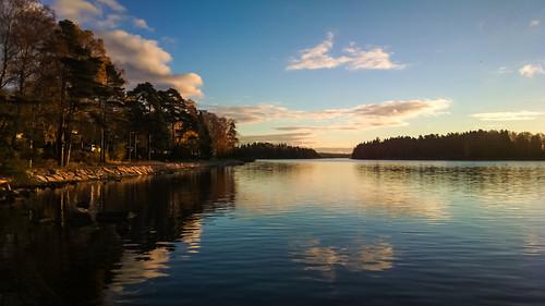 nokia808 landscape waterscape sea espoo finalnd calm reflection trees outdoors nature clouds sky sunrise morning