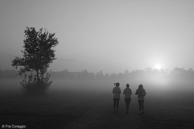 Morning Mist - La nebbia del mattino