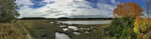 scarboroughmaine marsh marshland clouds sky trees waterplants bushes shrubs panorama iphonese snapseed stevefrenkel fall afternoon asperatusclouds tidalwaters tidalmarsh