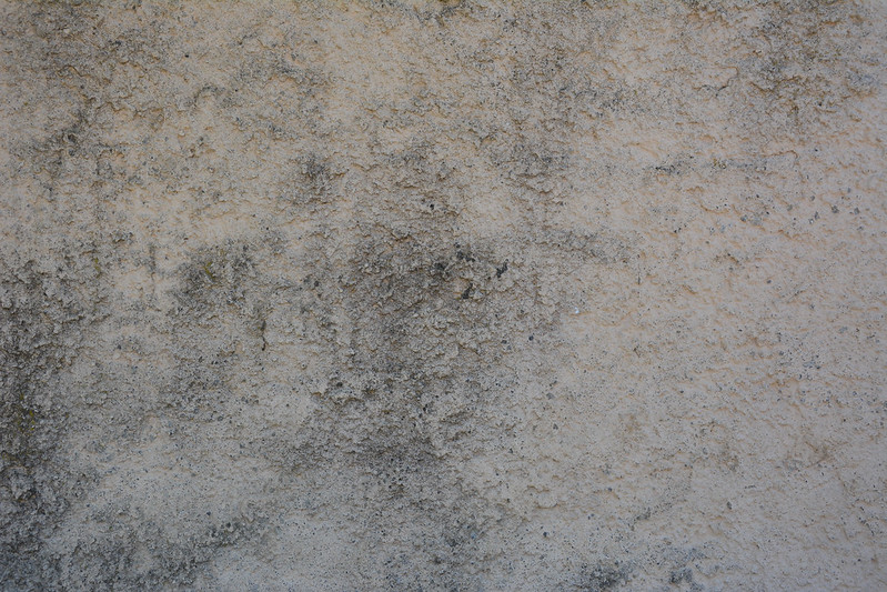 Wall Texture #04
