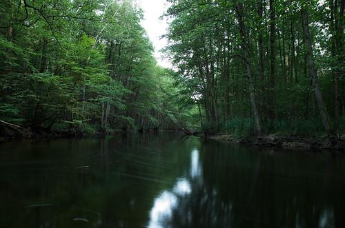 polska poland polen polonia gambezia k30 dpn drawienski park narodowy drawa korytnica river rzeka long exposure water flow