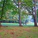 Paseando por el campo de golf en Hondarribia