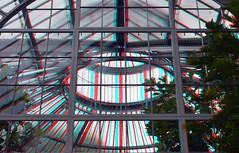 Hortus Botanicus Amsterdam 3D