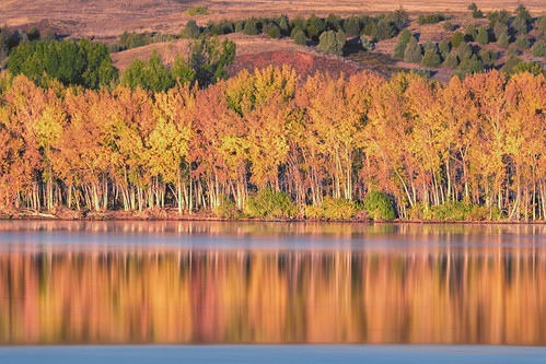 landscape lake water reflections fall autumn trees color longexposure chatfieldstatepark lakechatfield colorado landscapes