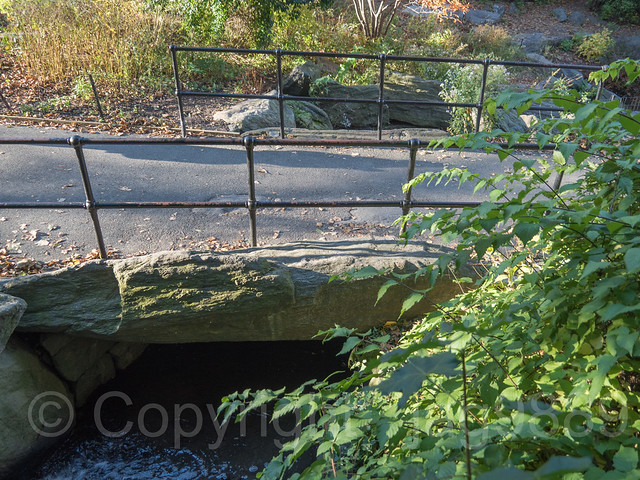 Boulder Footbridge over the Grotto Pool Stream, Central Park, New York City