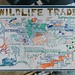 Wildlife Trade Symposium 2017