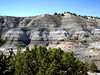 Big Cedar Ridge 1 - Worland Field Office by BLM_Wyoming