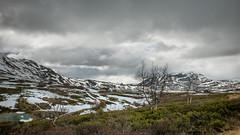 Hemsedal- Grøndalen- Øvre start- Sogglarberget Paragliding