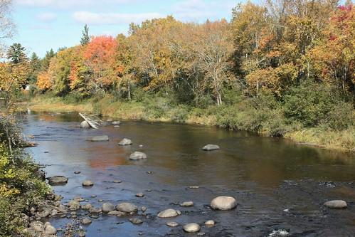 flumeridge newbrunswick canada river water trees fall foliage nature