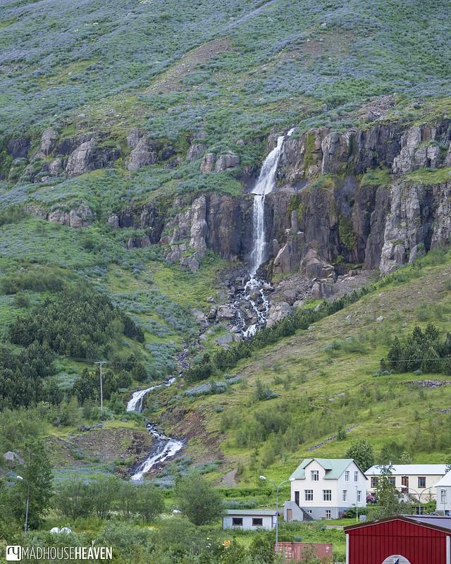Iceland - 2517