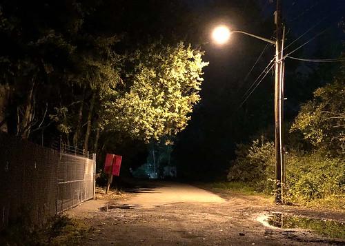 night usa washington kent triking