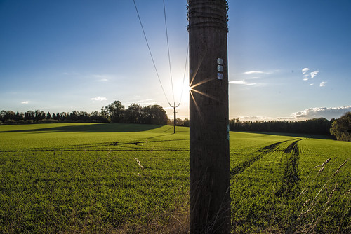 landscape landscapes landscapephotography sun flare lensflare sky skyscape field fields farmland countryside sunbuirst starburst sunlight sunny sunshine line lines leadinglines leading pentax k1 tree horizon pole wires