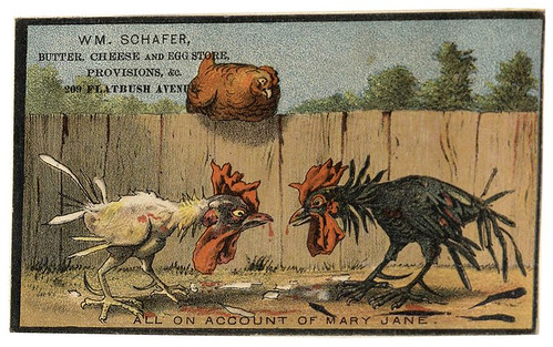 003-Scrapbook of trade cards 1877-1894- Brooklin Museum | by ayacata7