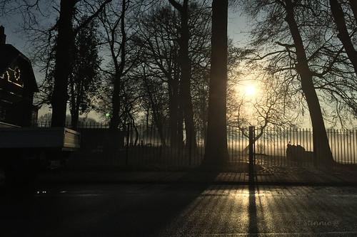 pictbystinnie mist fence sunrise morning trees house road backlight shadow