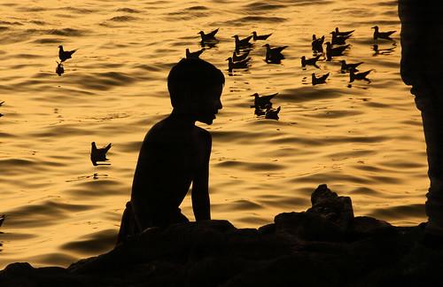 debmalyamukherjee canon550d 18135 mumbai gatewayofindia silhouette birds sunrise chandannagar