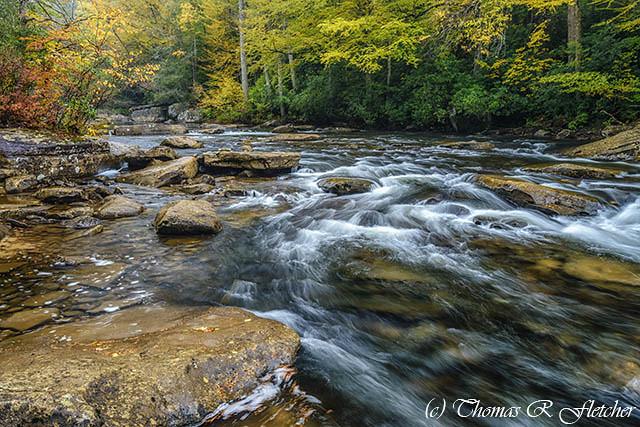 Autumn Rain on Cranberry River
