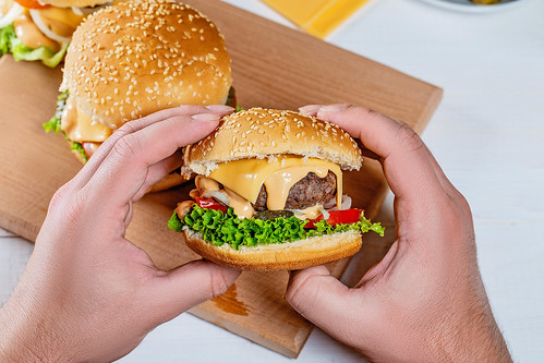 hamburger in the hands of a man | by wuestenigel