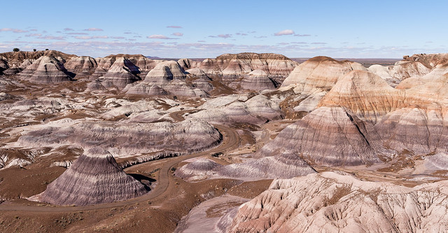 The Petrified Forest - Explore