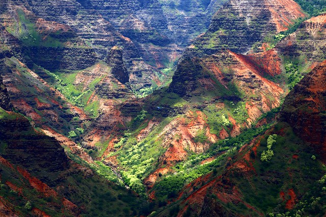 Helicopter in Waimea Canyon