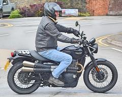 Triumph Street Scrambler 900cc