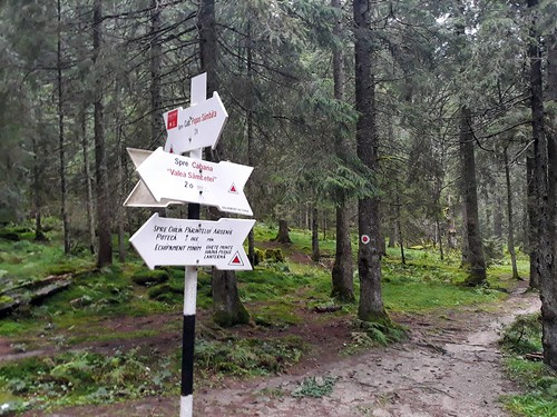 Muntii Fagaras - Valea Sambetei - Fereastra Mare   by mergpemunte.ro