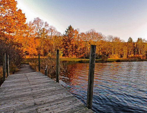 lake outdoor autumn foliage trees park forest dock colorful