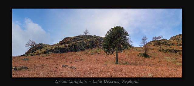Great Langdale
