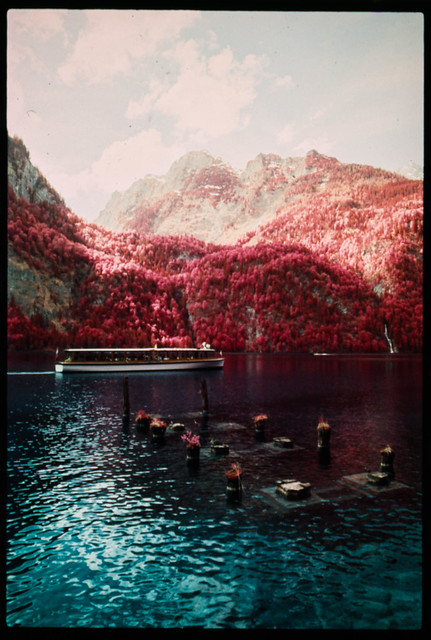 Broken jetty (Kodak Aerochrome)