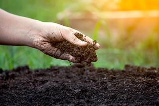 Soil in hand for planting | by USDAgov