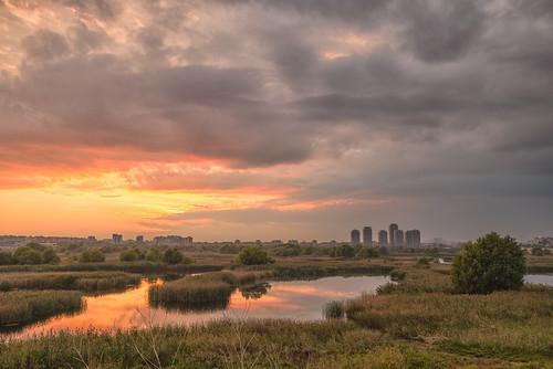 Sunset in Vacaresti Park | by Hattifnattar