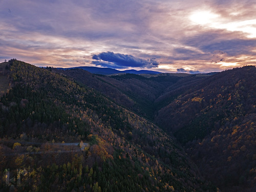 mountains fall trees sunset sibiu romania transilvania dusk cindrel carpathians