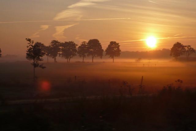 Sunrise ... (1160823)