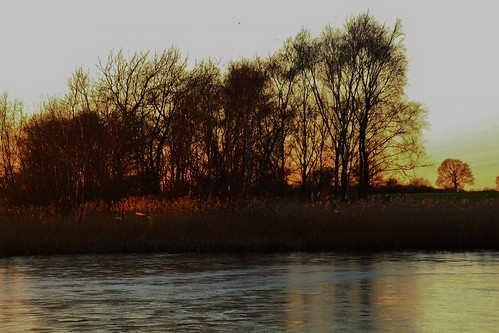 europe england cheshire outdoor nature lake sunlight simplysuperb sunset silhouette trees water beauty greatphotographers