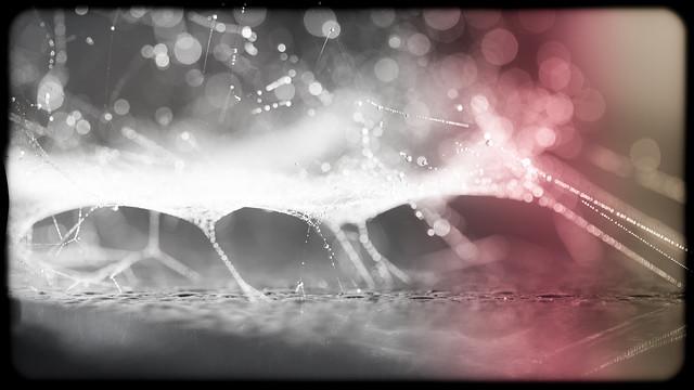Illuminated universe bokeh IMG_7508