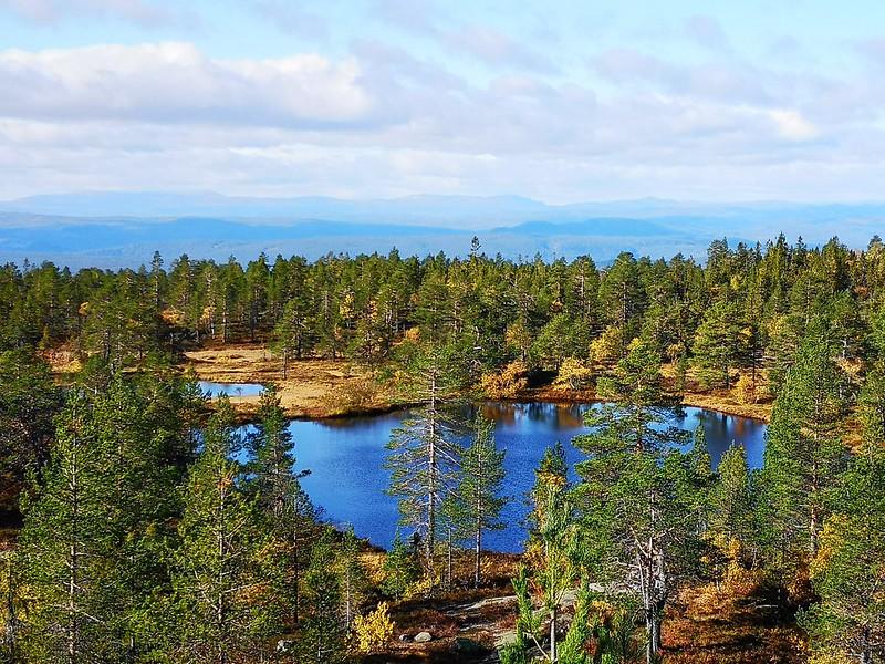 33-Utsikt vestover fra Hovlandsvarden